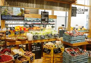 生鮮食品売場